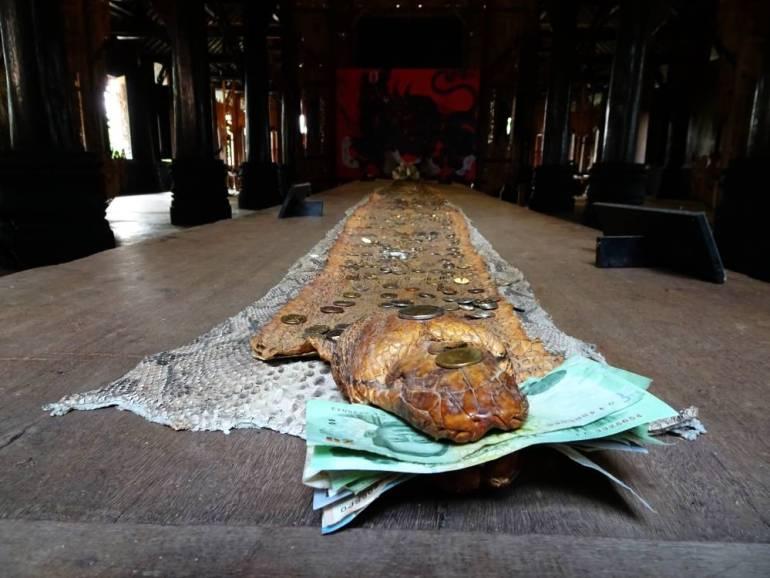 Schlange im schwarzen Tempel Chiang Rai