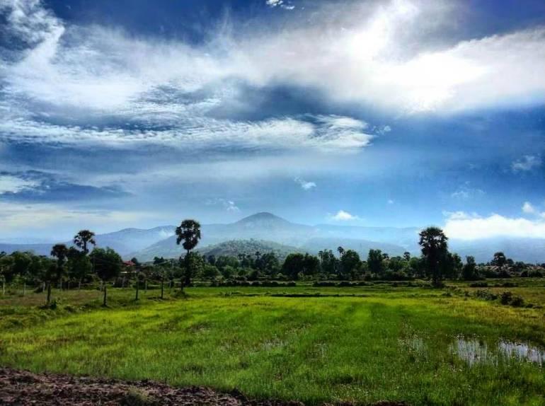 Landschaft Berge Reisfelder Kampot