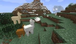 顆粒 - Minecraft Wiki