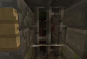 監禁される村人ゾンビ