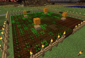 耕して種を植える