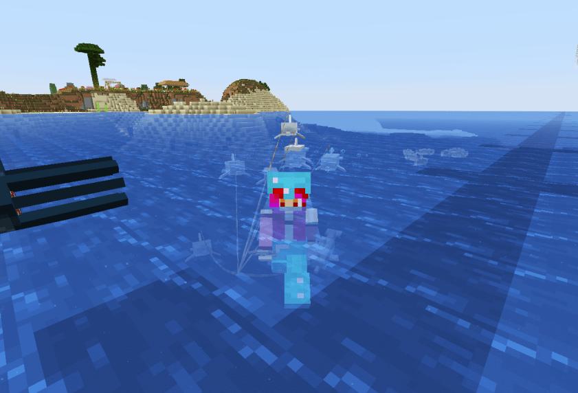 イルカ連れてきた