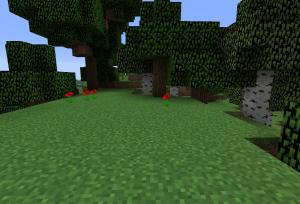森林にスポーン