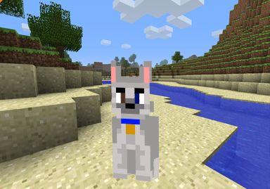 Descargar Skin perro Husky Minecraft