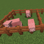 The Pig Came First Mod