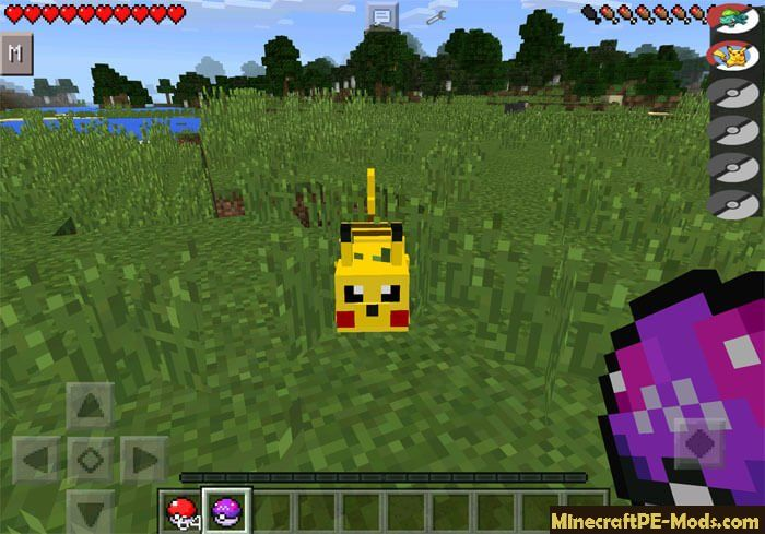 Pixelmon Commands Mod - Idee per la decorazione di interni - coremc us