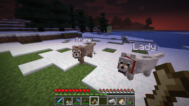 sophisticated-wolves-mod-minecraft-3