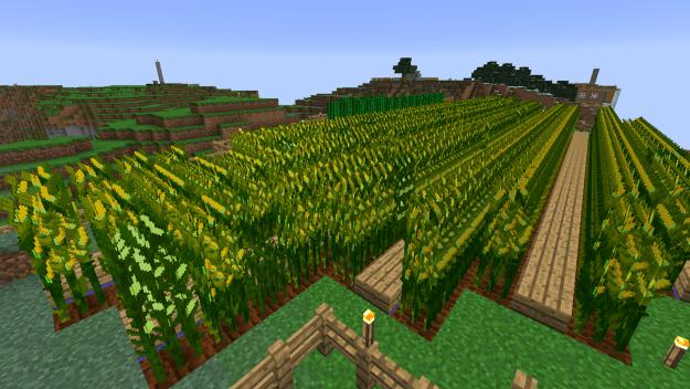 simply-corn-mod-3