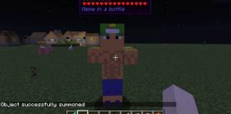 Meme in a Bottle Mod for Minecraft