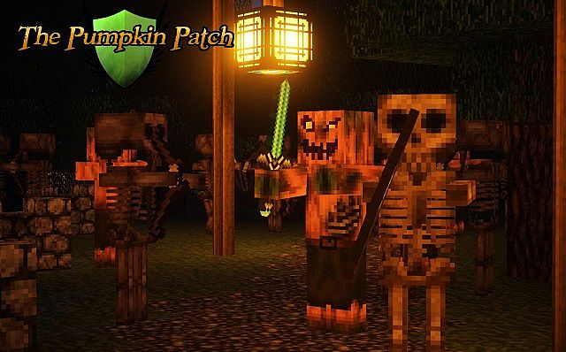 pumpkin-patch-7