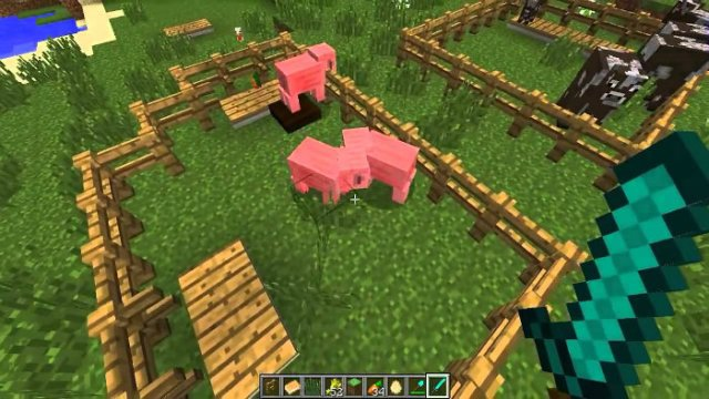 hungary-animals-minecraft