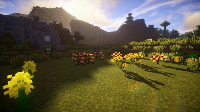 plants-mod-1-700x394