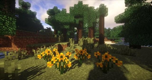 plants-mod-3-700x371