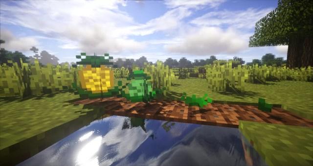 plants-mod-7-700x371