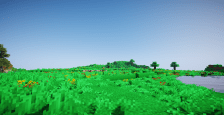 Flower Plains