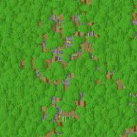 Infinite Jungle Village Minecraft Preset Seed