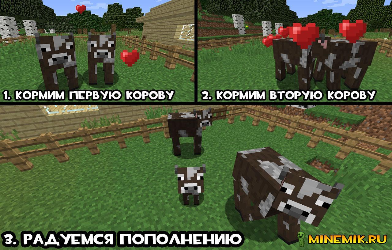 как разводить коров в майнкрафте