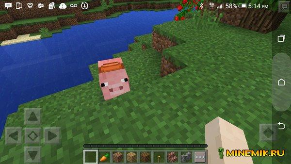 Седло для свиньи