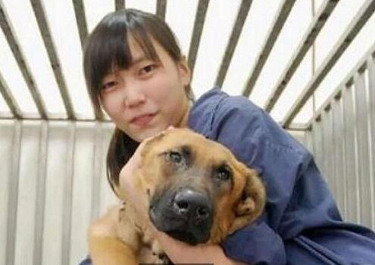 On Saturday, Taiwan stopped euthanizing shelter animals