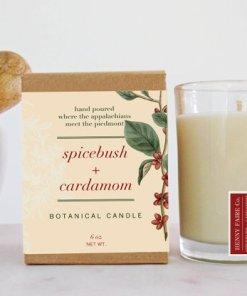 Spicebush & Cardamom Botanical Candle