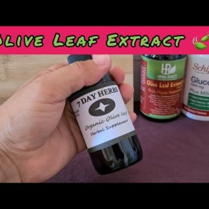 Olive Leaf Extract - Herbal Supplement