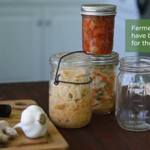 Fermented Multivitamins for Better Absorption | Get the Most Out of Supplementing