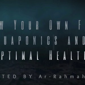 Indoor Aquaponics - Healthy Food | Ar-Rahmah Pharm
