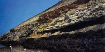 Figura 9. Detalle del tajo de carbón en Piedras Negras, Coahuila. Se observa el manto principal con una capa de limonita intercalada. (foto de Micare, 1982).