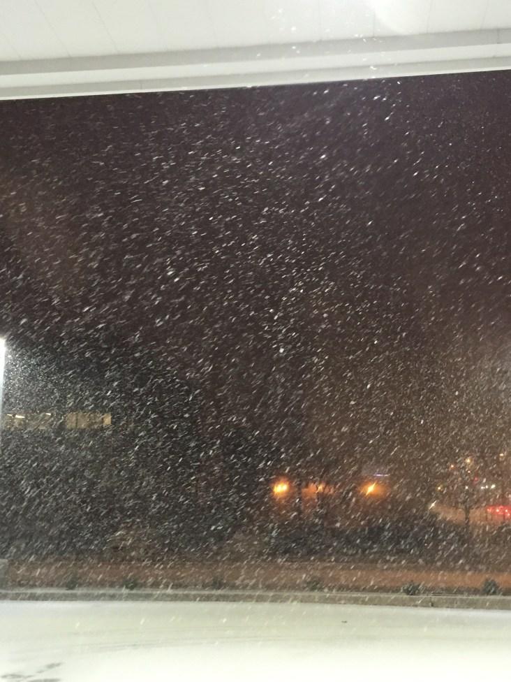 Start of Snow. (January)