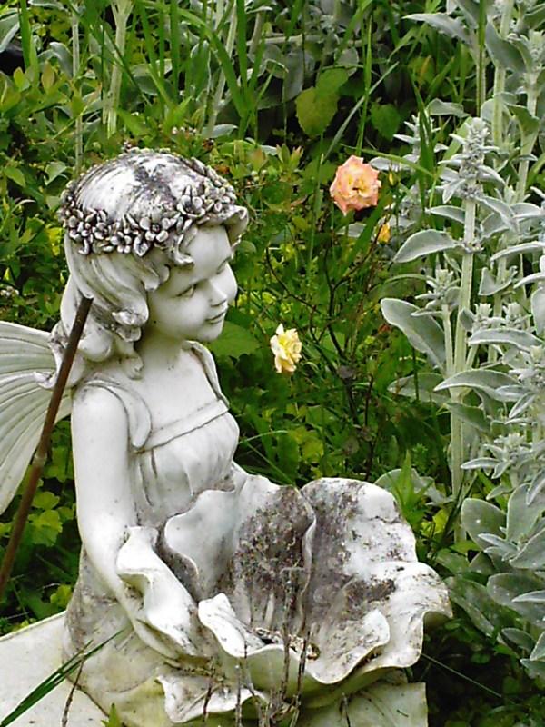 Container Gardening Minerva' Garden