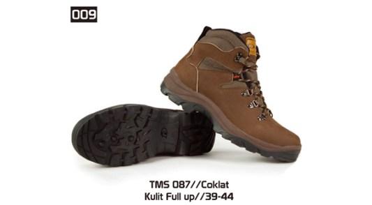 009-TMS-087