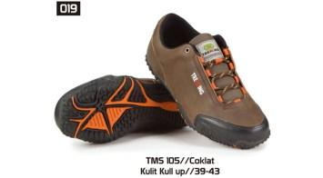 019-TMS-105