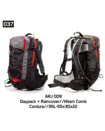 037-ARJ-009