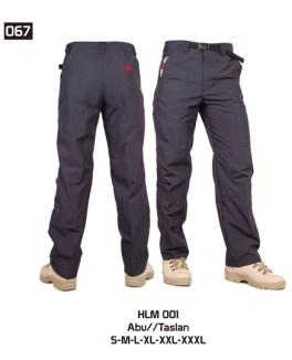 067-HLM-001
