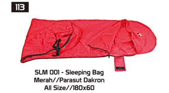 113-SLM-001