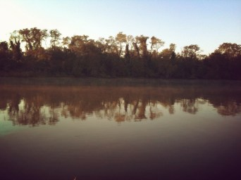 Eyelash of the Lake