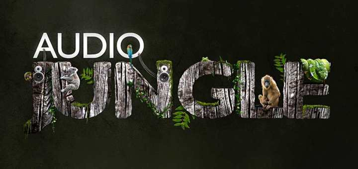 s-audio jungle minhcuong2312.com free download