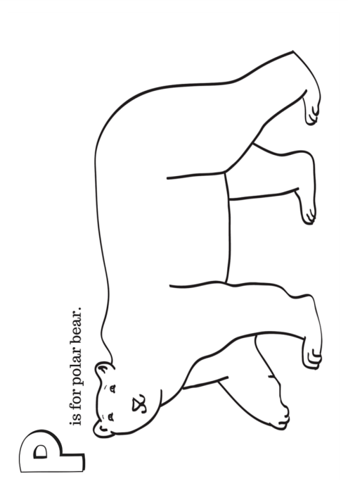 Arctic Animals Printable Coloring Pages