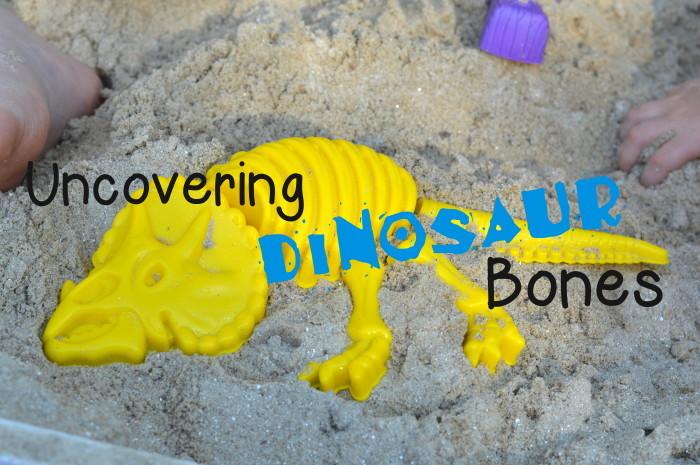 dinobonesprobablycrafting