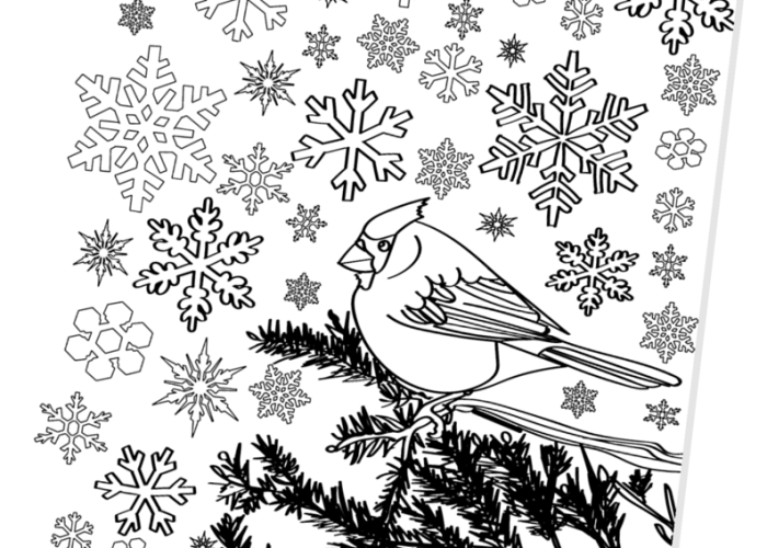 Cardinal in The Snow Free Printable Adult Coloring Page