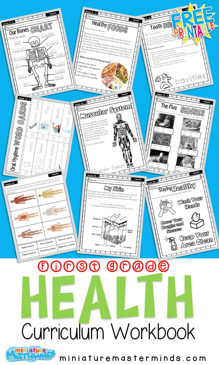 hight resolution of First Grade Curriculum Health Workbook Free Printable – Miniature  Masterminds