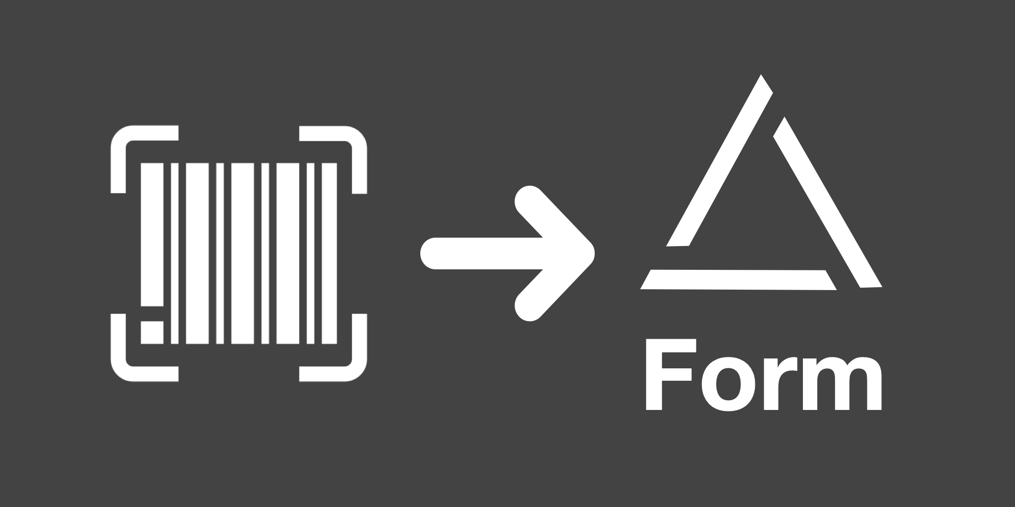 Scan Barcodes and QR Codes in miniExtensions Form