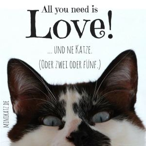 minikatz - all you need is love