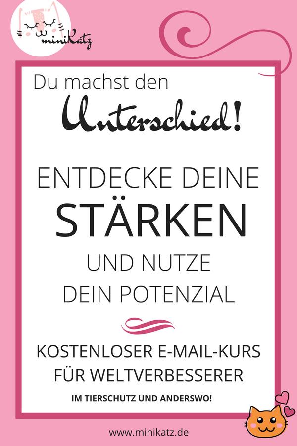 kostenloser E-Mail-Kurs - Entdecke deine Stärken und nutze dein Potenzial, um die Welt zu verbessern.