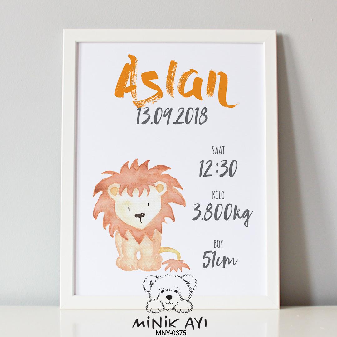 aslan doğum panosu