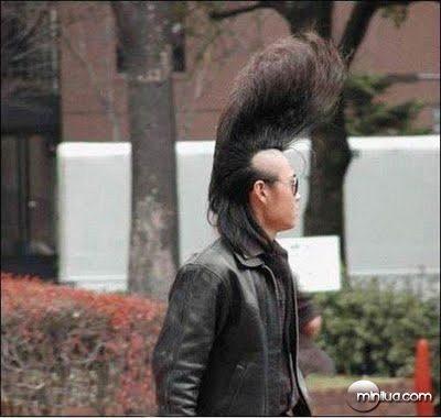 asian-elvis-big-top-hairdo-photo-funny
