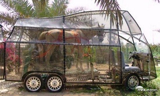 horse-car