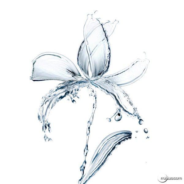 waterdesign2