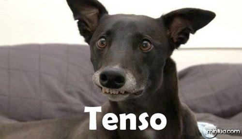 tensoc