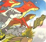 dvd animais do bosque dos vintens completo desenho animado es brasil__4751D4_1